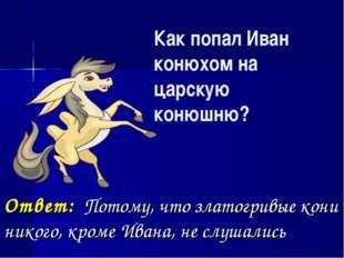 Как попал Иван конюхом на царскую конюшню? Ответ: Потому, что златогривые кон