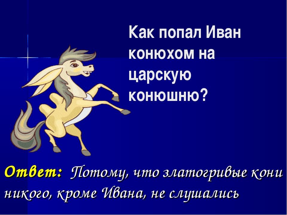 Как попал Иван конюхом на царскую конюшню? Ответ: Потому, что златогривые кон...