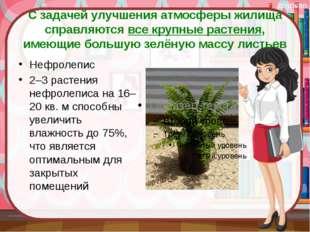 С задачей улучшения атмосферы жилища справляются все крупные растения, имеющи