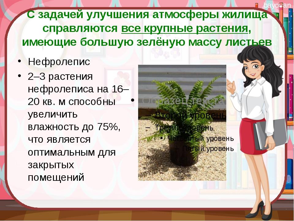 С задачей улучшения атмосферы жилища справляются все крупные растения, имеющи...