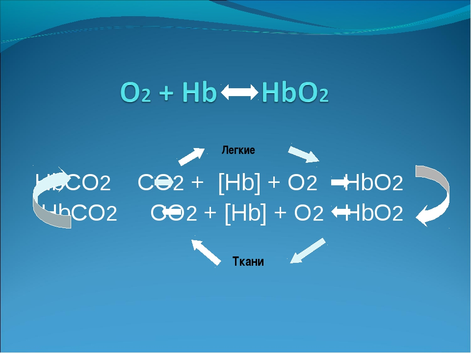 HbCO2 CO2 + [Hb] + O2 HbO2 HbCO2 CO2 + [Hb] + O2 HbO2 Легкие Ткани