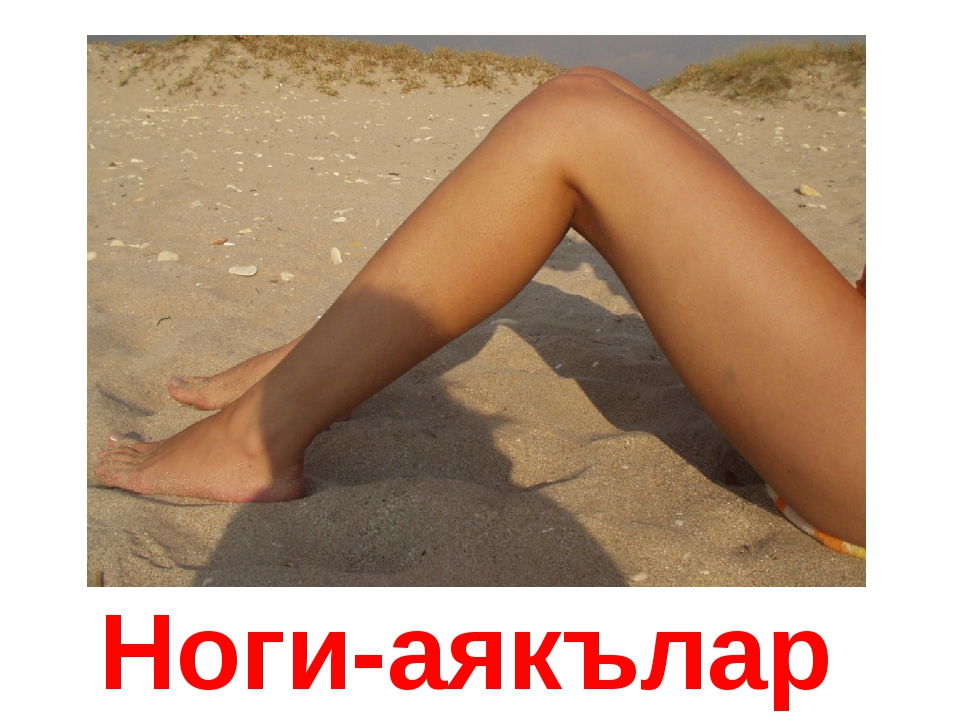 Ноги-аякълар
