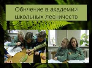 Обнчение в академии школьных лесничеств