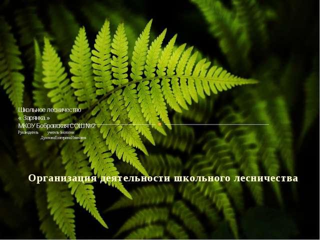 Организация деятельности школьного лесничества Школьное лесничество « Зарянк...