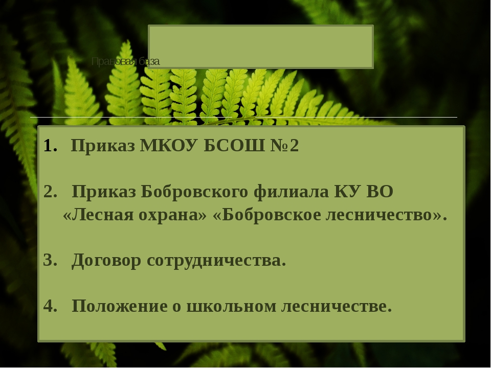 Приказ МКОУ БСОШ №2 2. Приказ Бобровского филиала КУ ВО «Лесная охрана» «Бобр...