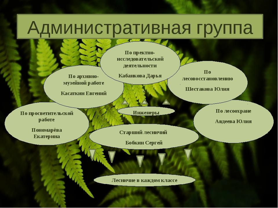 По лесоохране Авдеева Юлия По лесовосстановлению Шестакова Юлия По просветите...