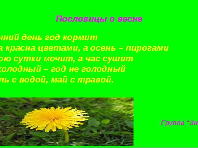 Пословицы о весне Весенний день год кормит Весна красна цветами, а осень – пи...