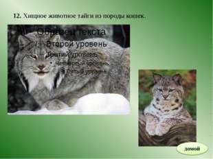 ИНТЕРНЕТ – РЕСУРСЫ http://images.yandex.ru/yandsearch?source=wiz&fp=0&text=%D