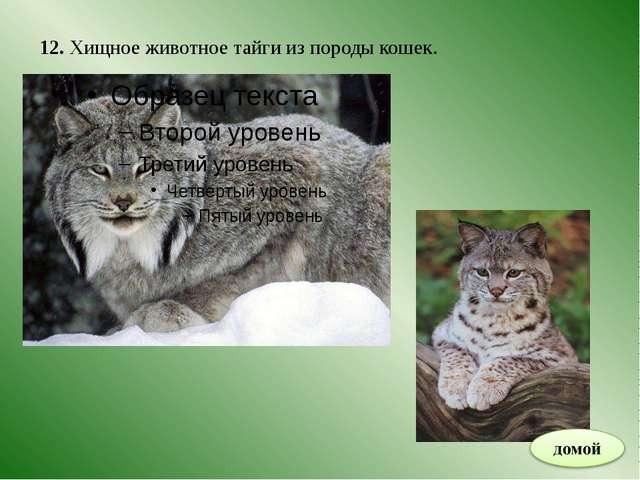 ИНТЕРНЕТ – РЕСУРСЫ http://images.yandex.ru/yandsearch?source=wiz&fp=0&text=%D...