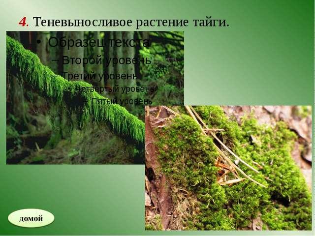 5. Эта птица помогает сажать дубовые деревья.