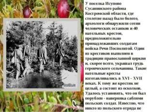 У поселка Исупово Сусанинского района Костромской области, где столетие назад