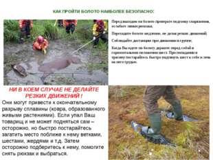 КАК ПРОЙТИ БОЛОТО НАИБОЛЕЕ БЕЗОПАСНО: Перед выходом на болото проверьте подго