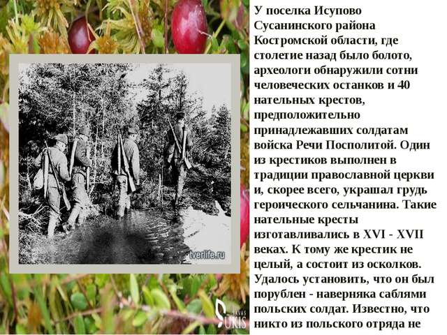У поселка Исупово Сусанинского района Костромской области, где столетие назад...