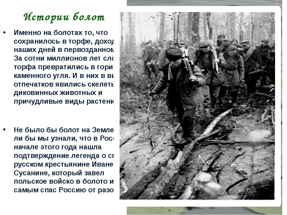 Истории болот Именно на болотах то, что сохранилось в торфе, доходит до наших...