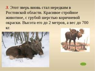 5. Редкий зверёк, добыча которого запрещена. Отличается удлинённым носом – хо