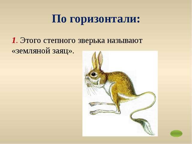 3. Этот зверь вновь стал нередким в Ростовской области. Красивое стройное жив...