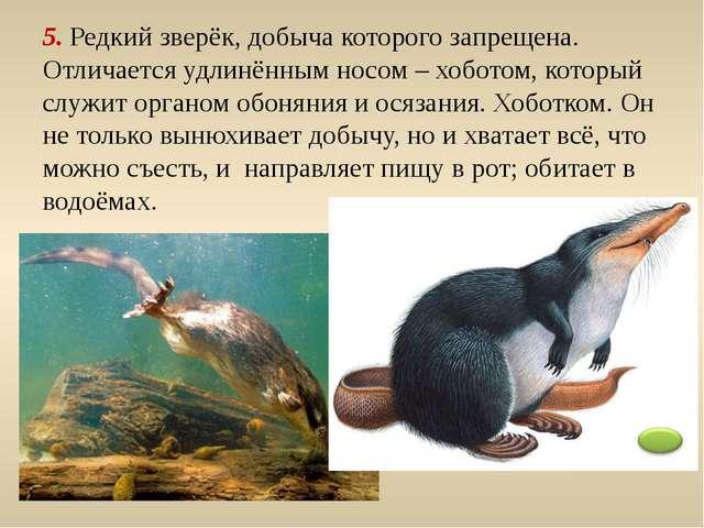 6. Травоядное животное – современник мамонта. Имеет быстрые ноги. Скорость бе...