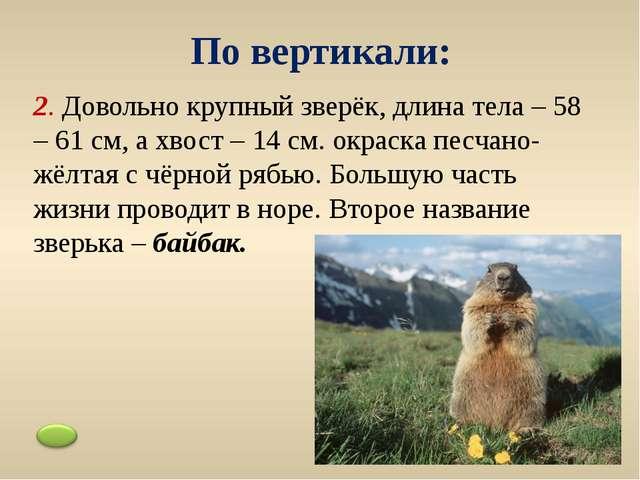 10. Ещё это дерево называют вяз. Самое распространённое в Ростовской области....