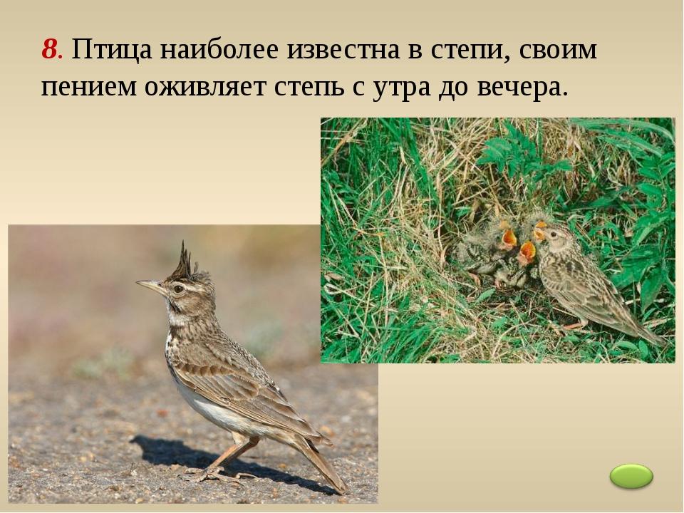 8. Птица наиболее известна в степи, своим пением оживляет степь с утра до веч...