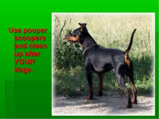 Use pooper scoopers and clean up after YOUR dogs.