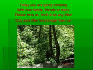 Today you are going camping With your family, friends or class. Please help u