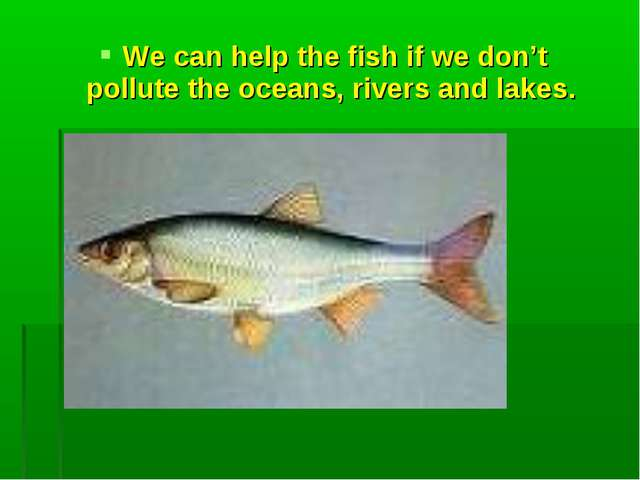 We can help the fish if we don't pollute the oceans, rivers and lakes.