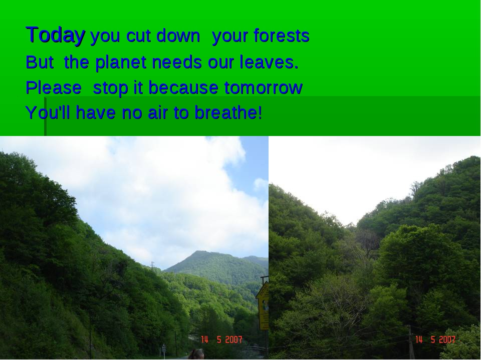 Today you cut down your forests But the planet needs our leaves. Please stop...