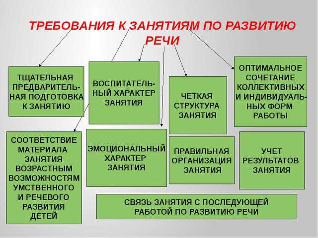 ТРЕБОВАНИЯ К ЗАНЯТИЯМ ПО РАЗВИТИЮ РЕЧИ ТЩАТЕЛЬНАЯ ПРЕДВАРИТЕЛЬ- НАЯ ПОДГОТОВ...