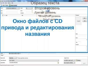 Окно файлов с CD привода и редактирования названия