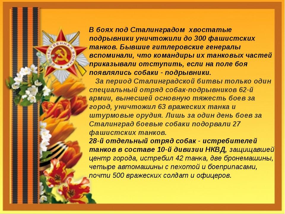 В боях под Сталинградом хвостатые подрывники уничтожили до 300 фашистских тан...