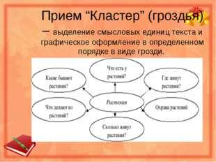 """Прием """"Кластер"""" (гроздья) – выделение смысловых единиц текста и графическое о"""