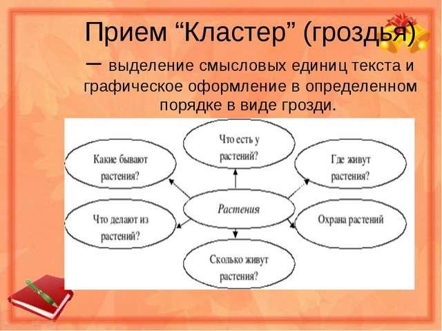 """Прием """"Кластер"""" (гроздья) – выделение смысловых единиц текста и графическое о..."""