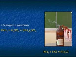 Реагирует с кислотами 2NH3 + H2SO4 = (NH4)2SO4 NH3 + HCl = NH4Cl