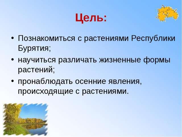 Цель: Познакомиться с растениями Республики Бурятия; научиться различать жизн...