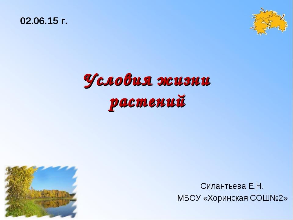 Условия жизни растений Силантьева Е.Н. МБОУ «Хоринская СОШ№2» * г.