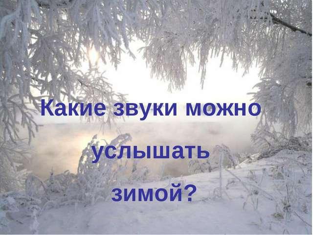Какие звуки можно услышать зимой?