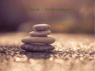 «Камни – тоже живые»