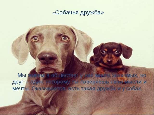 «Собачья дружба» Мы живем в обществе: у нас много знакомых, но друг – один, к...