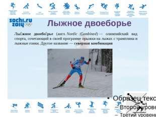 Прыжки на лыжах с трамплина (англ.ski jumping)— вид спорта, включающий прыж