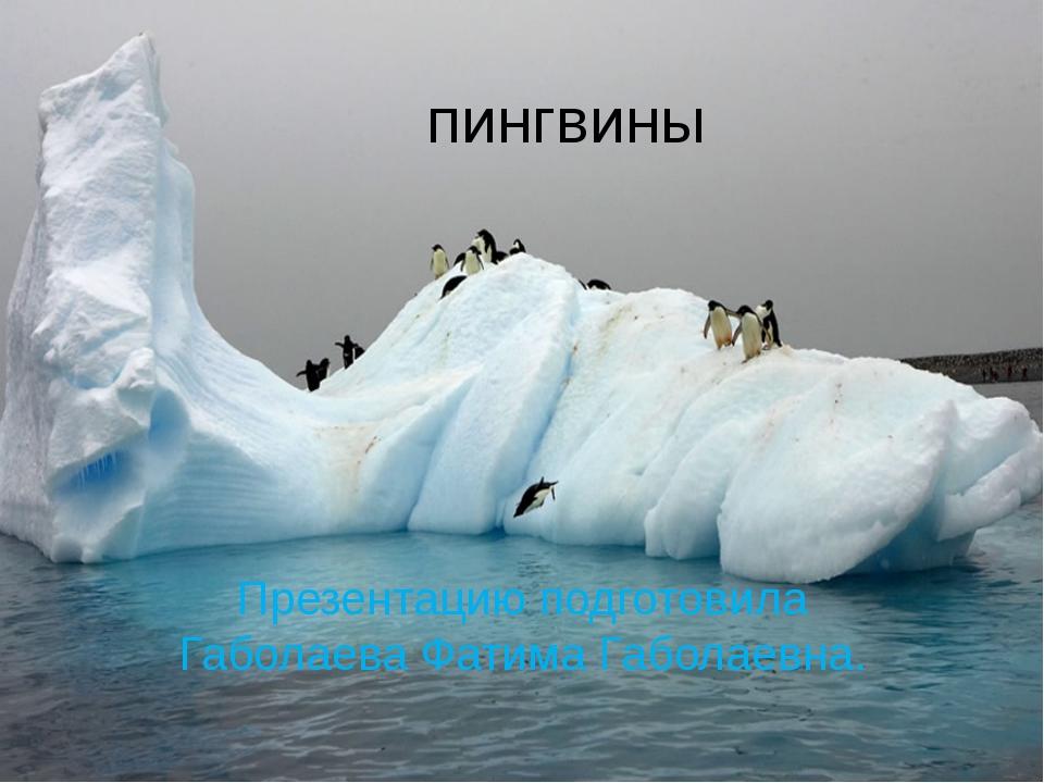 пингвины Презентацию подготовила Габолаева Фатима Габолаевна.