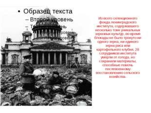 Из всего селекционного фонда ленинградского института, содержавшего несколько