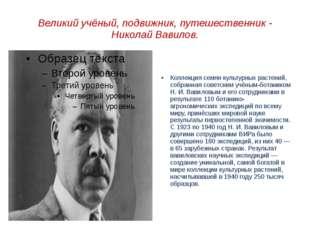 Великий учёный, подвижник, путешественник - Николай Вавилов. Коллекция семян