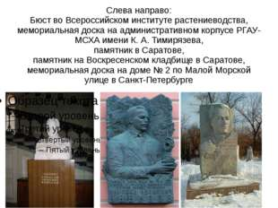 Слева направо: Бюст во Всероссийском институте растениеводства, мемориальная