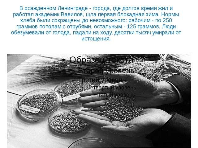В осажденном Ленинграде - городе, где долгое время жил и работал академик Вав...