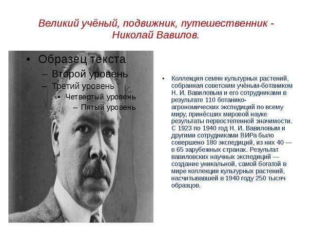 Великий учёный, подвижник, путешественник - Николай Вавилов. Коллекция семян...