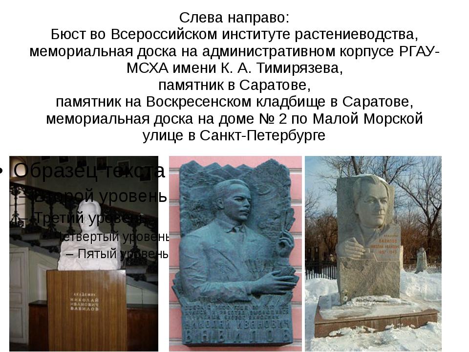 Слева направо: Бюст во Всероссийском институте растениеводства, мемориальная...