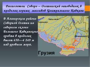 Расположен Северо – Осетинский заповедник в пределах горных массивов Централь