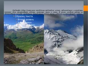 Ландшафт Северо-Осетинского заповедника представлен лесным, субальпийским и