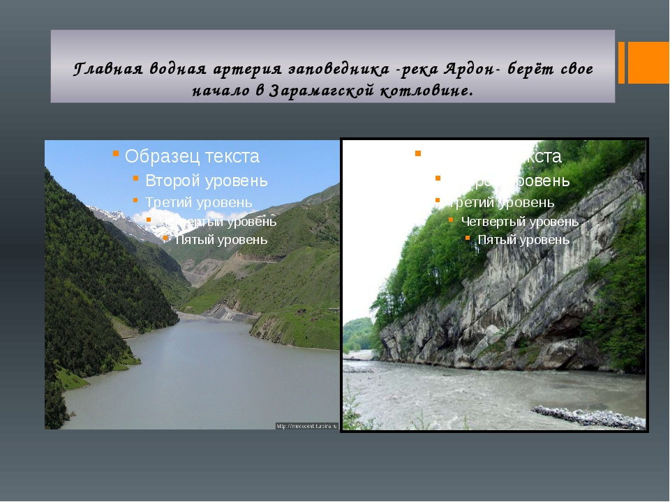 Главная водная артерия заповедника -река Ардон- берёт свое начало в Зарамагск...