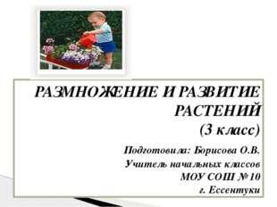 РАЗМНОЖЕНИЕ И РАЗВИТИЕ РАСТЕНИЙ (3 класс) Подготовила: Борисова О.В. Учите